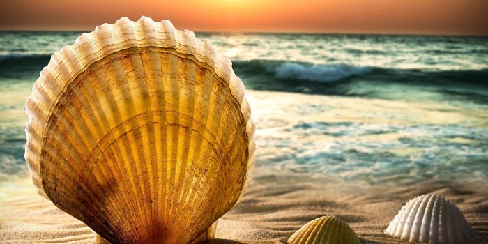 Idee per arredare casa al mare